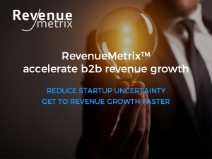 revenuemetrix.com accelerate b2b revenue growth front page banner